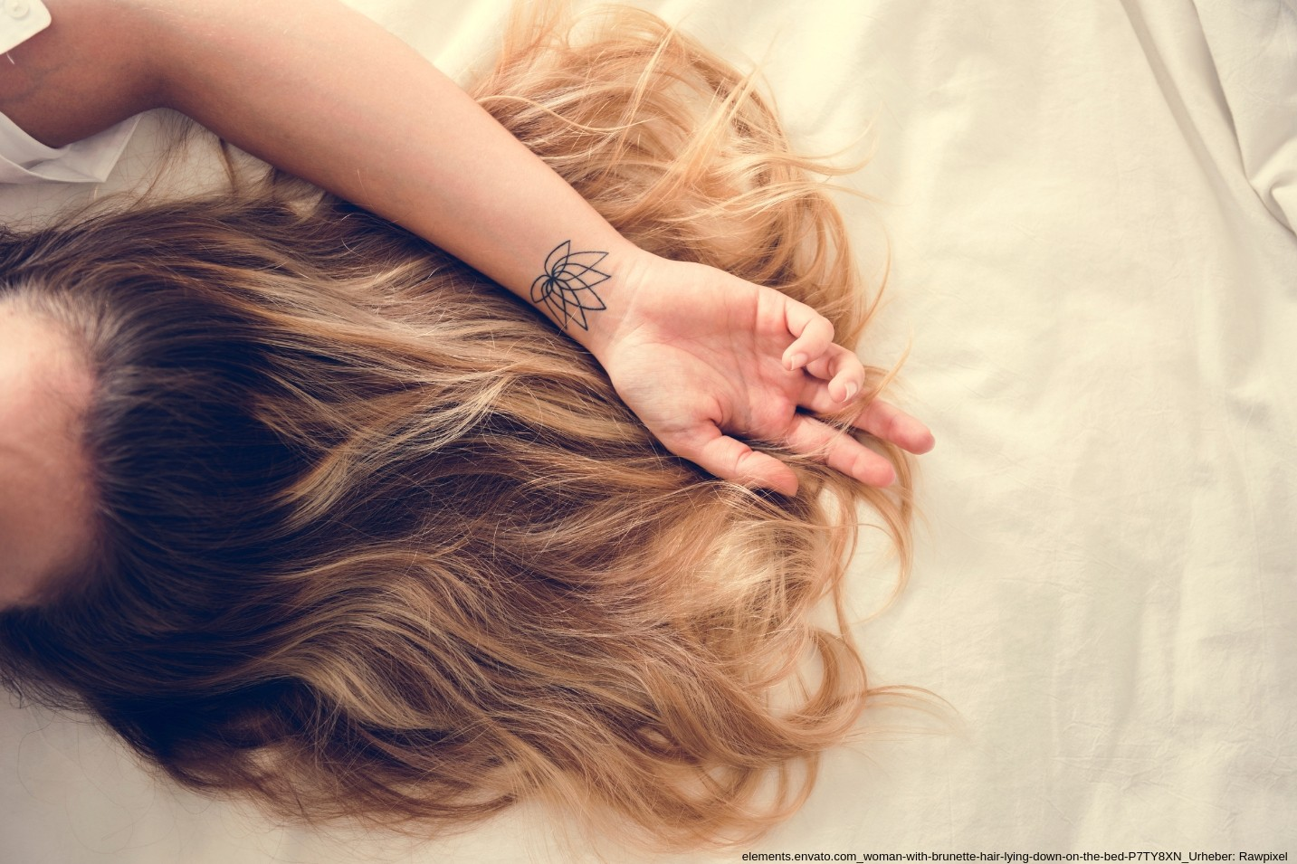 Hairdreams extensions lange