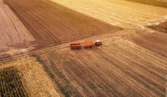 Top Agrar Jobs und was Du dafür mitbringen solltest