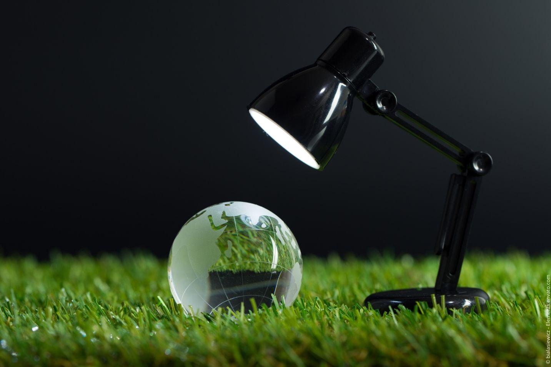 Coaching & Training für Nachhaltigkeit in Unternehmen