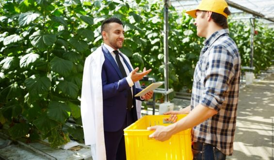 Wie Sie in einer Nische erfolgreich werden, am Beispiel von Agrar Consulting